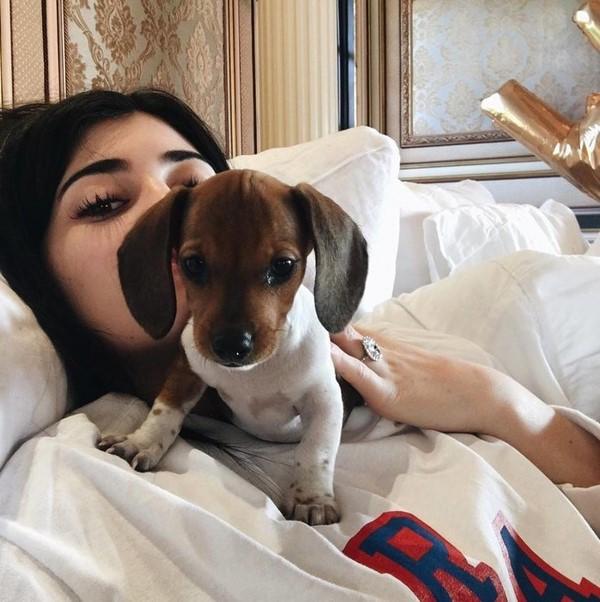 Звезды в постели: Кендалл Дженнер в кровати в компании с лучшим другом