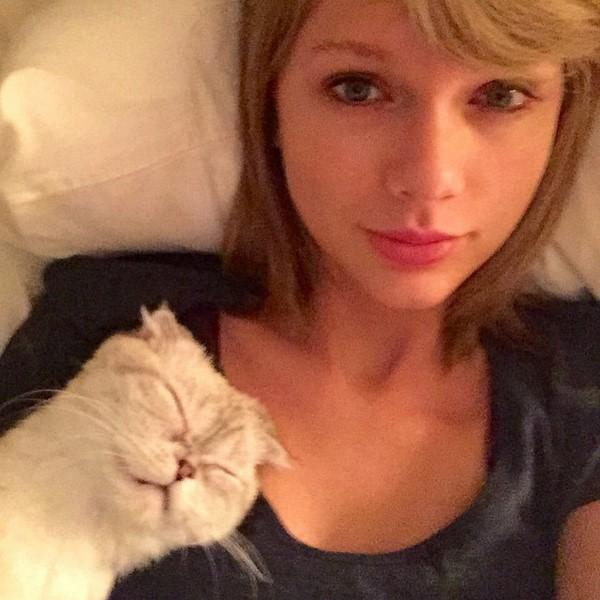Звезды в кровати: певица Тейлор Свифт делает утреннее селфи с любимым котом
